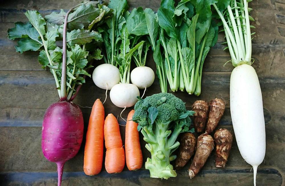 こだわり農家の朝採り旬野菜セット