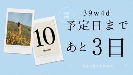 予定日まで3日-1日(39w4d-6d)ブログ